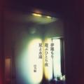 [jhaiku][夏][haiku][写真俳句][poetry][季語][photohaiku][micropoetry][summer][フォト俳句]夢籠もり遊ぶひとり夜 夏よ永遠[山乃鯨]