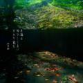 [jhaiku][秋][haiku][写真俳句][poetry][季語][photohaiku][micropoetry][autumn][フォト俳句]月溢(あふ)る 匂ひしじまに ひとり覚(さ)む[山乃鯨]
