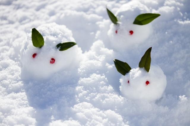 雪 食べられる?