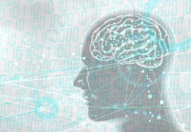 ASD 脳機能