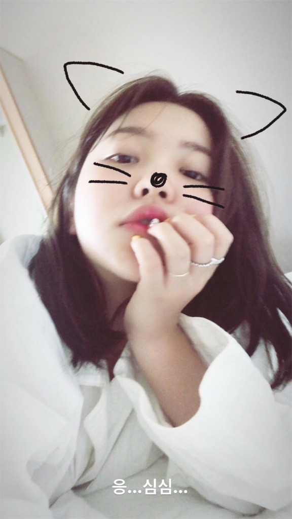f:id:iamyu:20180527210339j:image