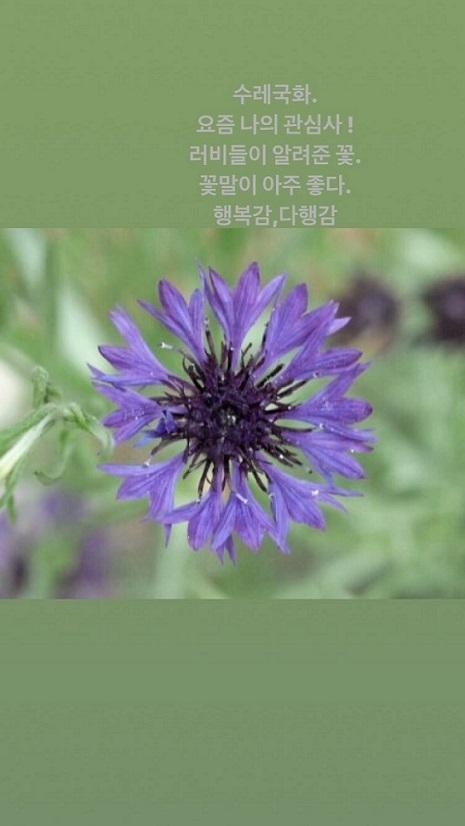 f:id:iamyu:20200321005824j:plain