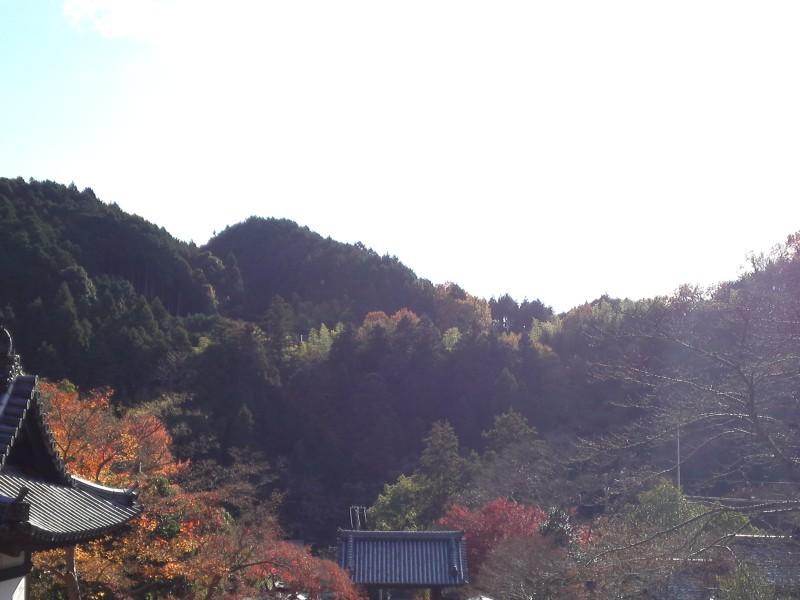 観心寺20121204_04