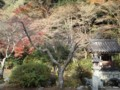 観心寺20121204_07