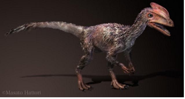 小型のティラノサウルスであるぐ