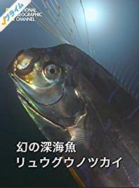 f:id:ibookwormer:20170104134258p:plain