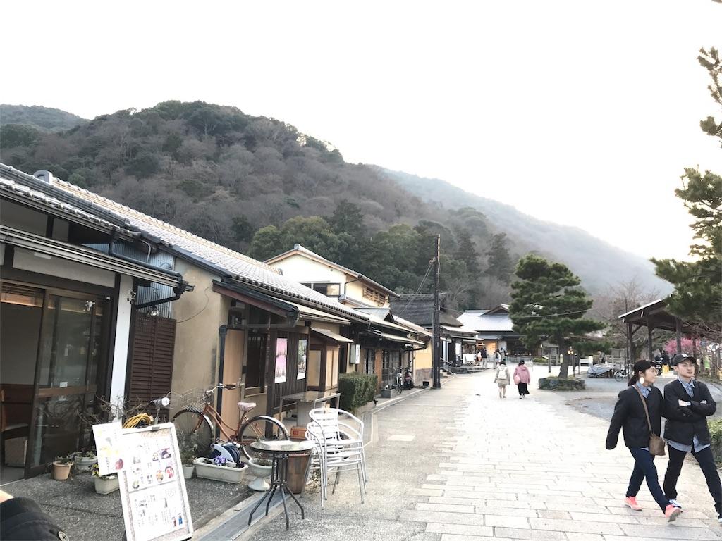 f:id:ibukishimatani:20170408150134j:image