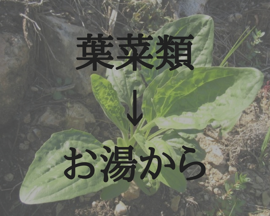 f:id:ibukishimatani:20170811183934j:plain