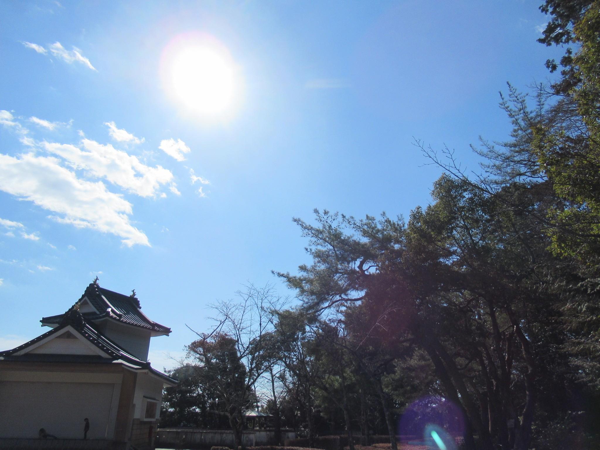 f:id:ichi-hama:20190223231553j:image