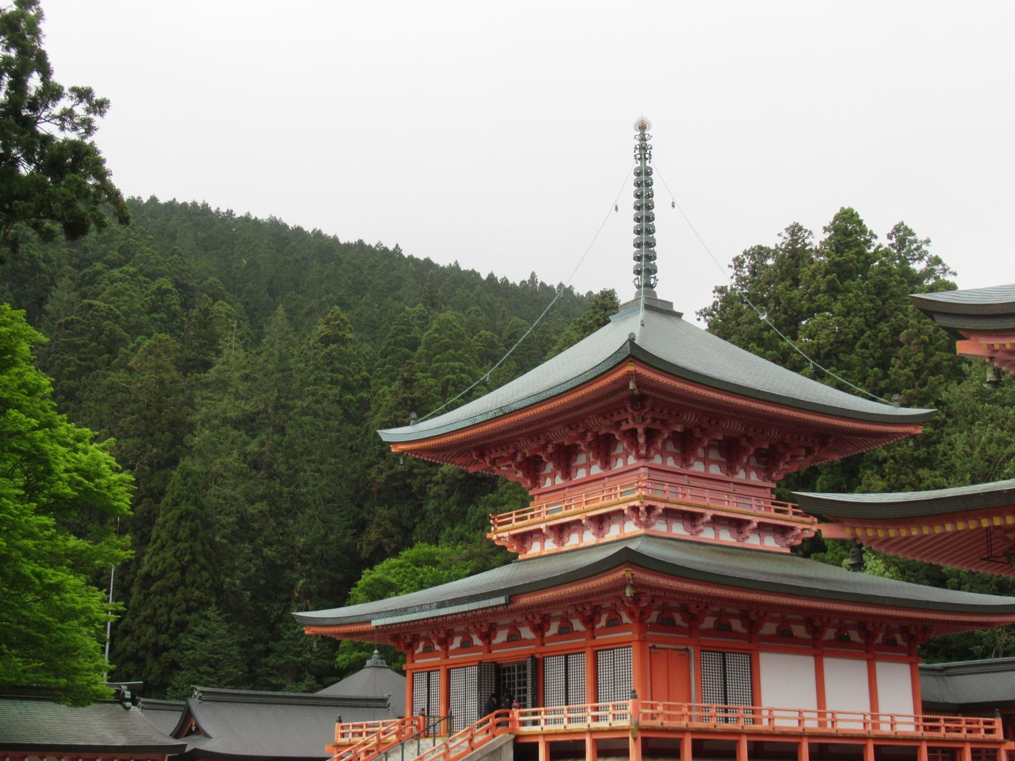 f:id:ichi-hama:20190519102521j:image