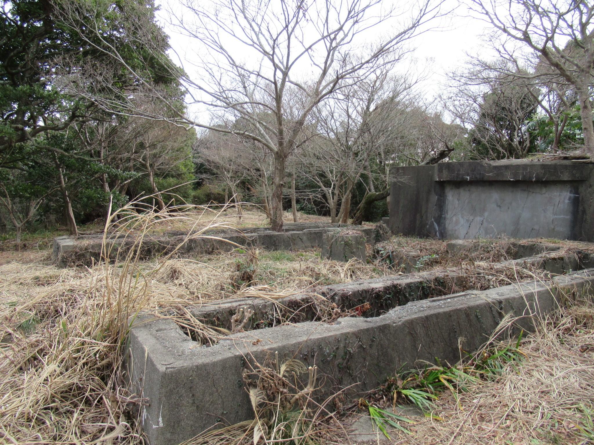 f:id:ichi-hama:20200126112205j:image