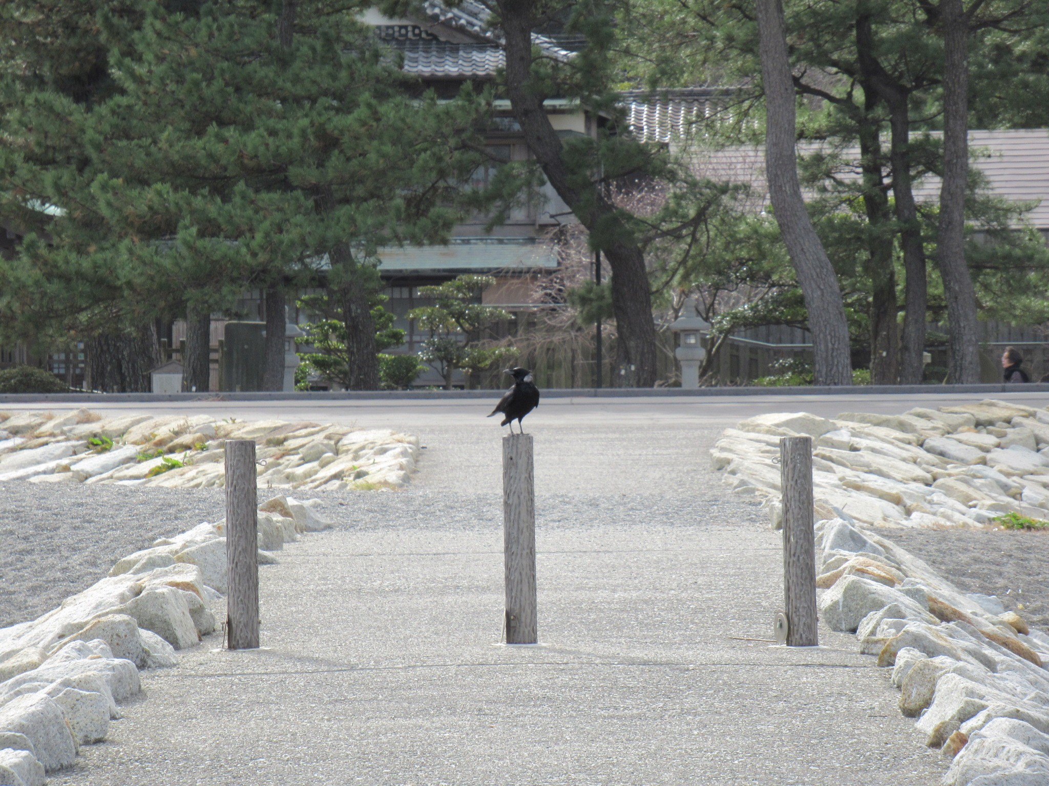 f:id:ichi-hama:20200126112521j:image