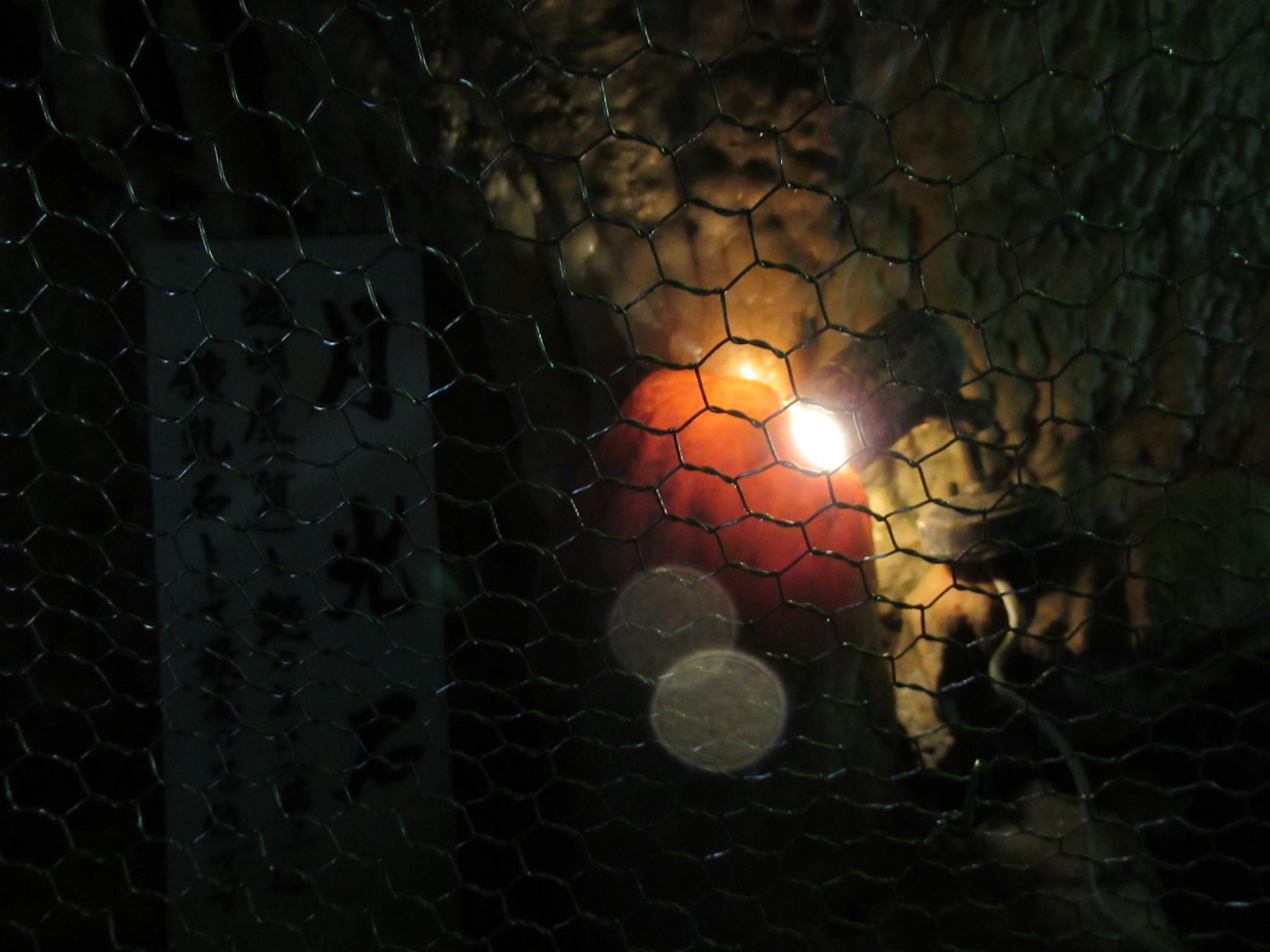 f:id:ichi-hama:20200216122237j:image