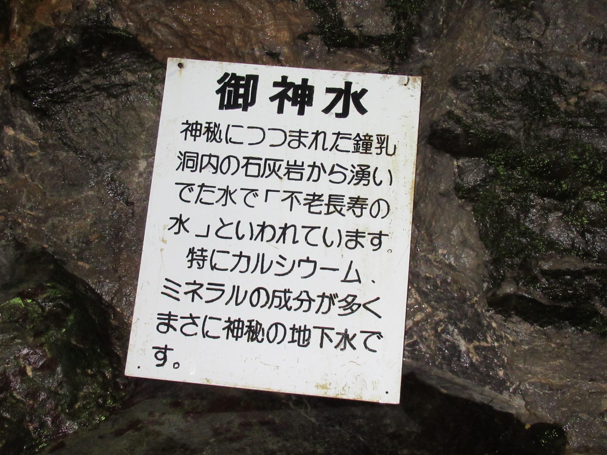 f:id:ichi-hama:20200216122318j:image