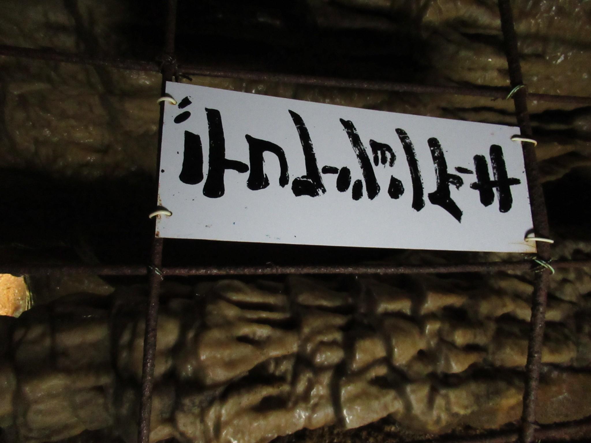 f:id:ichi-hama:20200216122414j:image