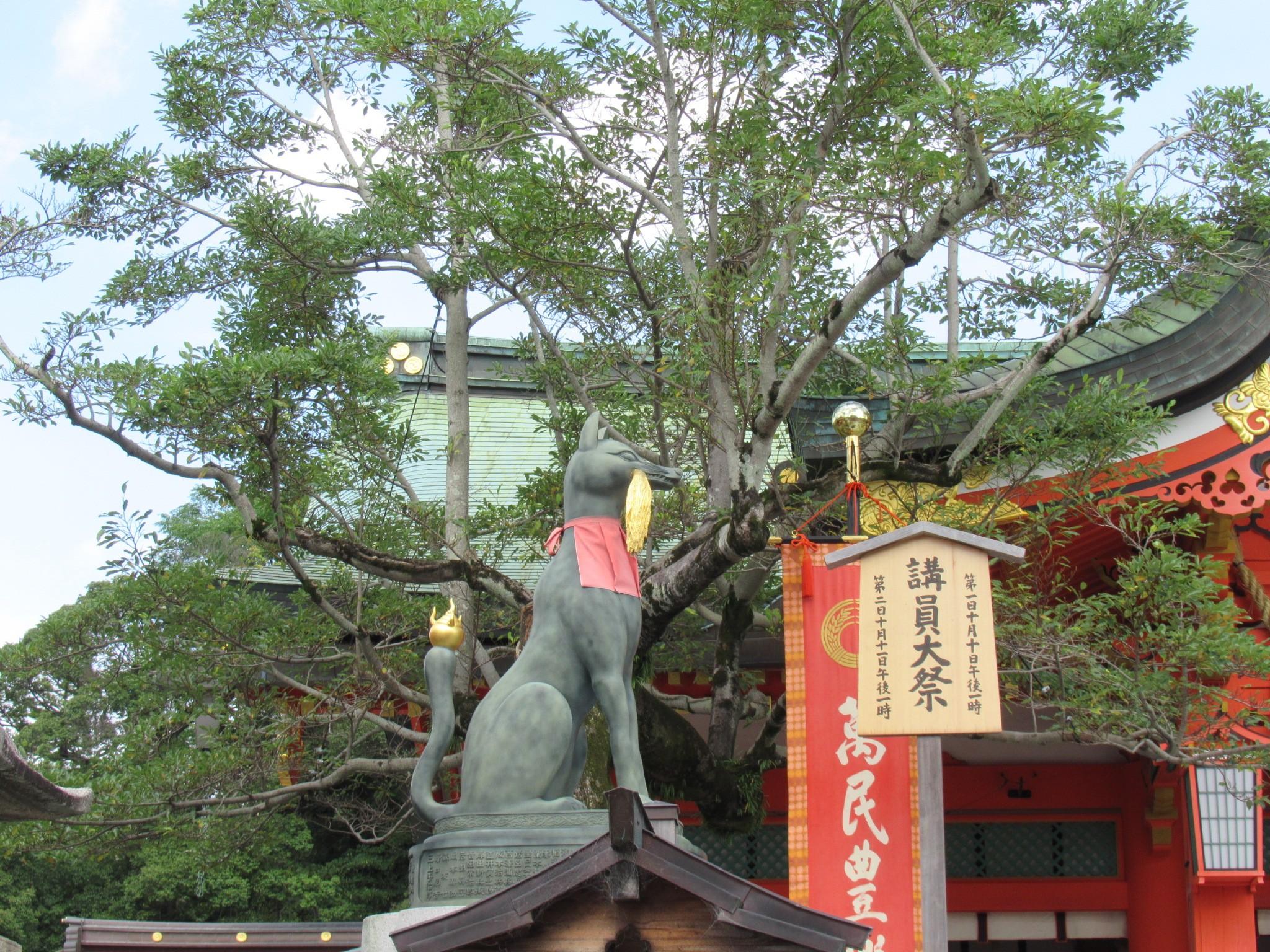 f:id:ichi-hama:20200802132429j:image