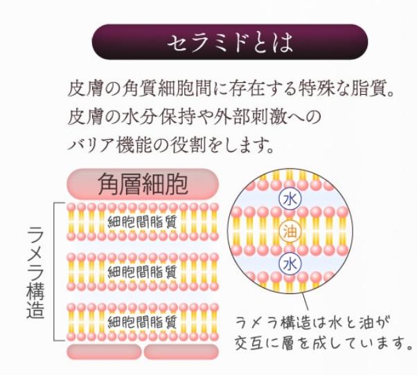 f:id:ichi1011:20181127134644p:plain