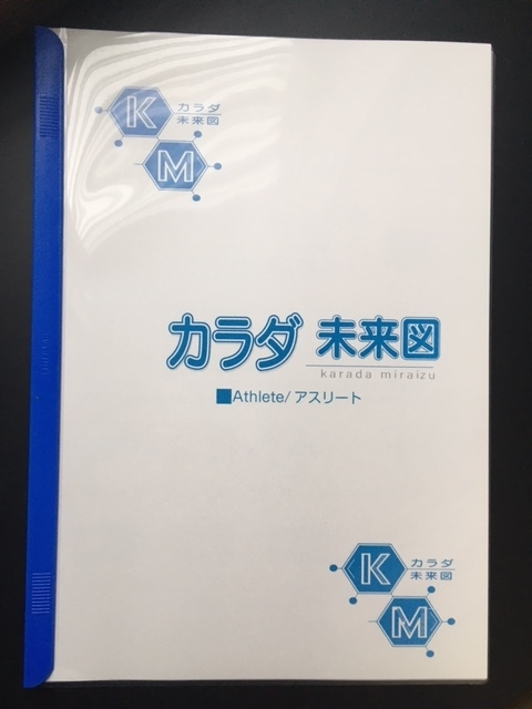 f:id:ichiashi:20210321211217j:plain