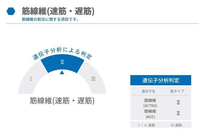 f:id:ichiashi:20210410220426j:plain