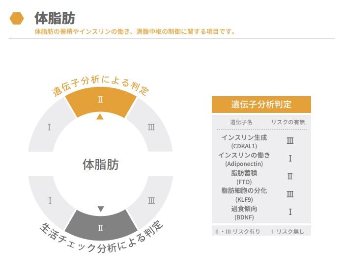 f:id:ichiashi:20210410222910j:plain