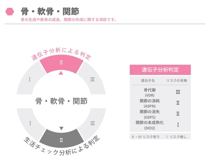 f:id:ichiashi:20210410222936j:plain