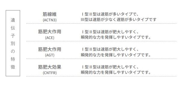 f:id:ichiashi:20210411122650j:plain