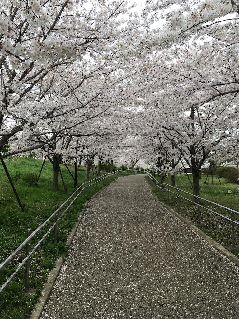 f:id:ichiashi:20210417145536j:image