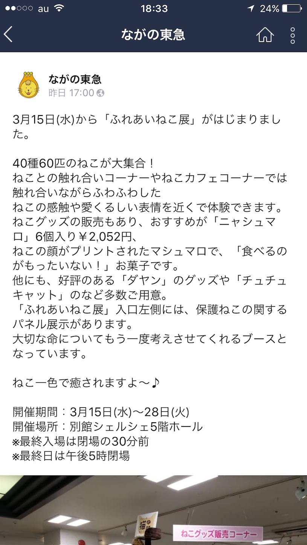 f:id:ichibanicihiba:20170316183502p:image
