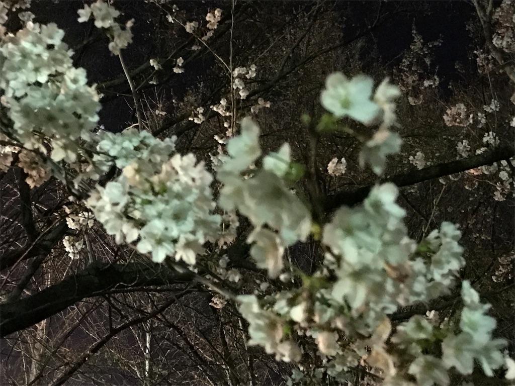f:id:ichigo-daihuku:20170405012740j:image