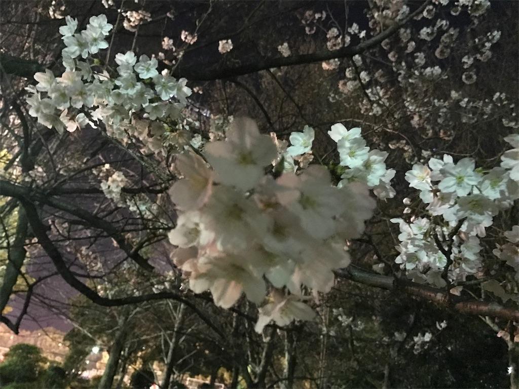 f:id:ichigo-daihuku:20170405012751j:image