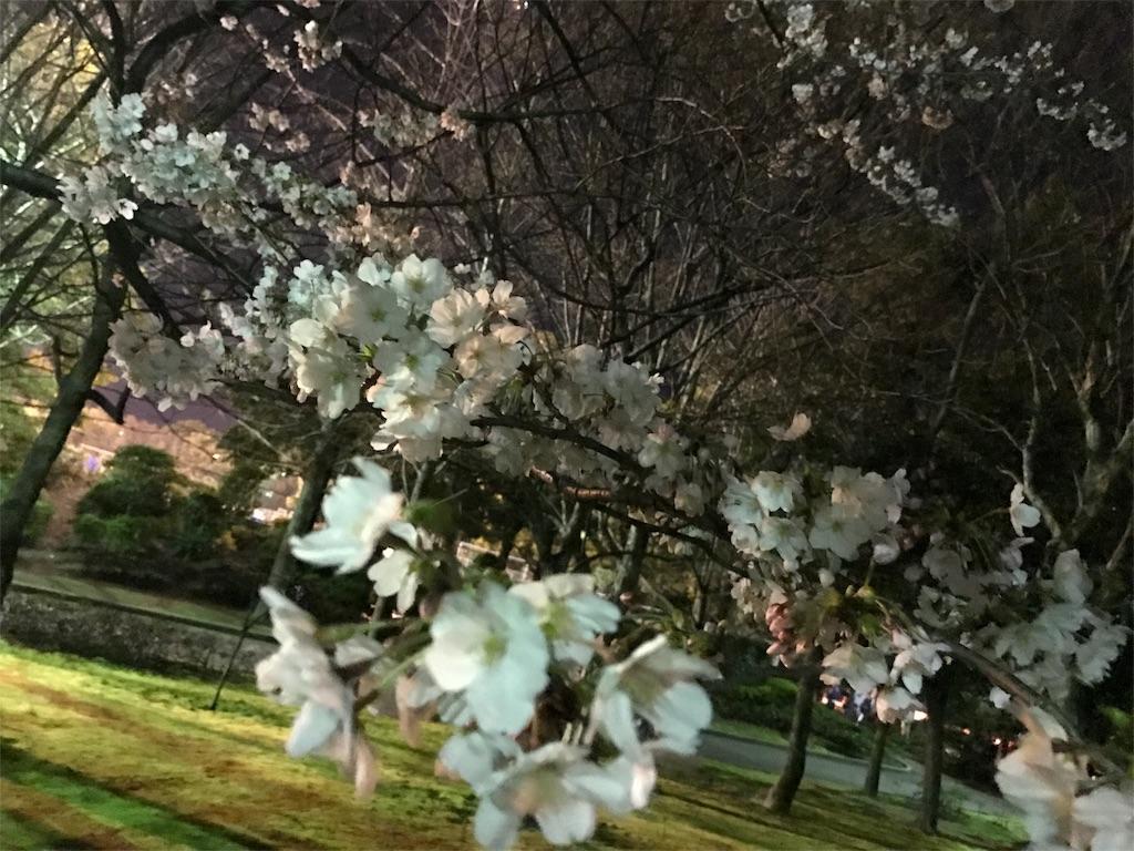f:id:ichigo-daihuku:20170405013020j:image