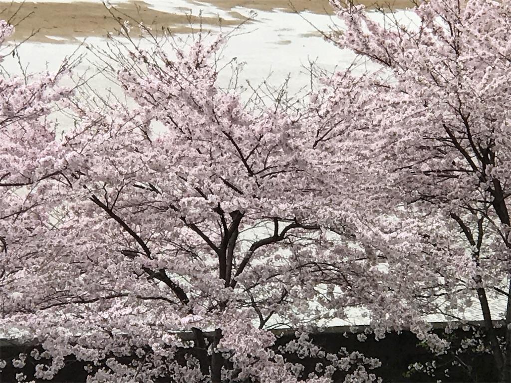 f:id:ichigo-daihuku:20170416091553j:image
