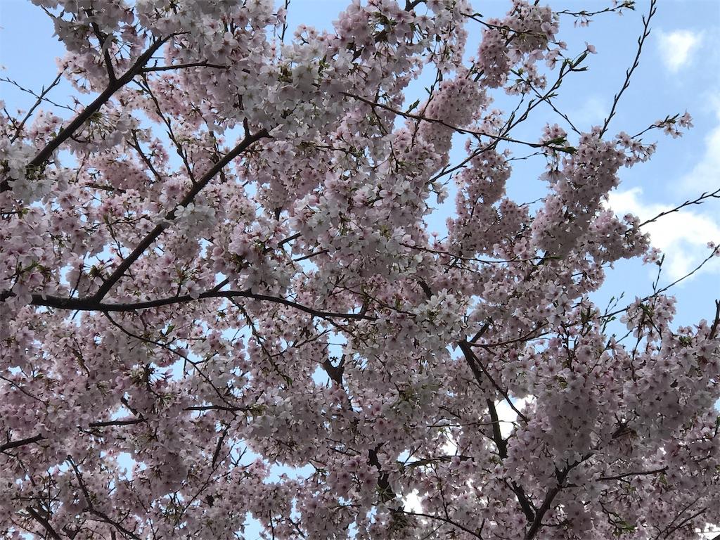 f:id:ichigo-daihuku:20170416091817j:image