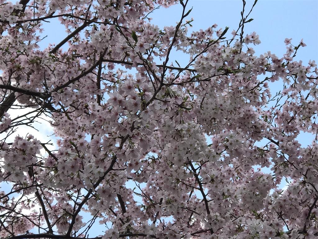 f:id:ichigo-daihuku:20170416092031j:image
