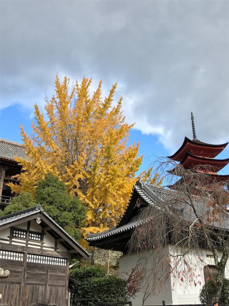 f:id:ichigo-daihuku:20171217100224j:image