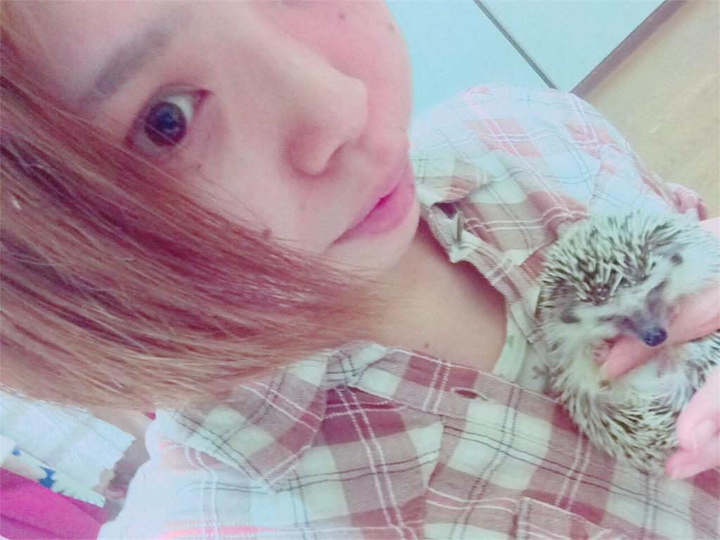 f:id:ichigo10banira:20170302164444j:image