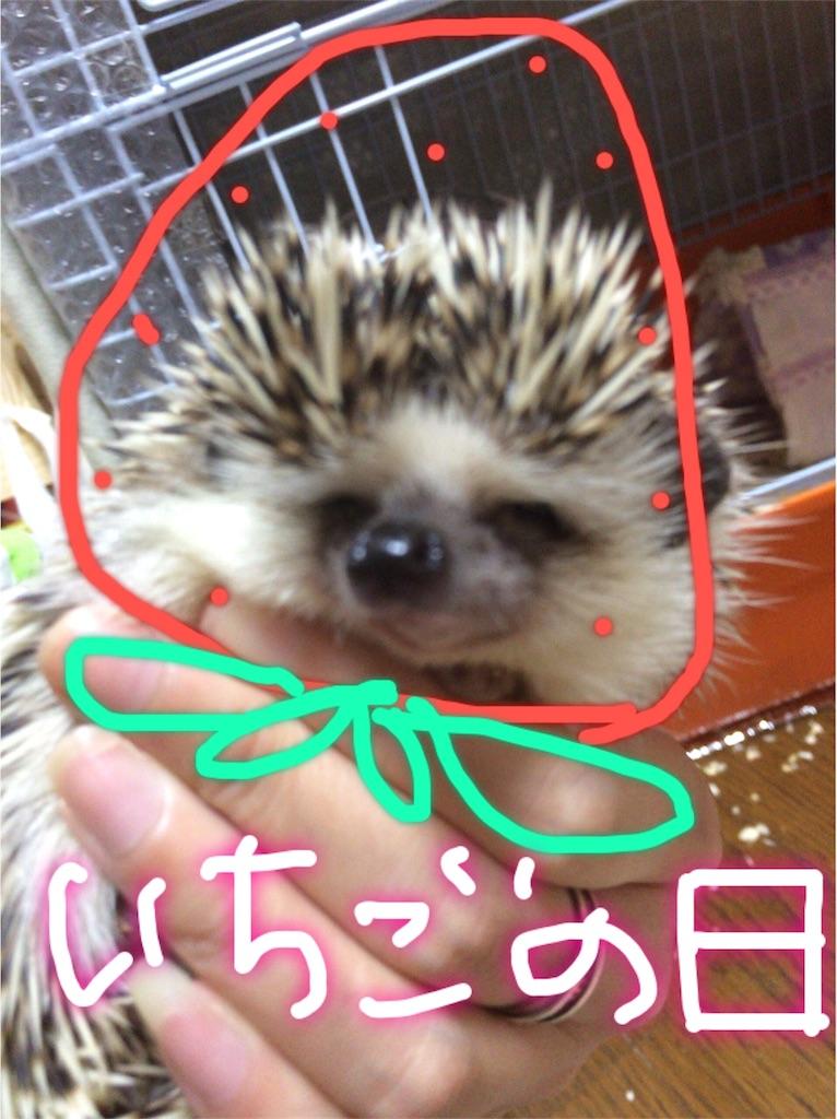 f:id:ichigo10banira:20170304151856j:image