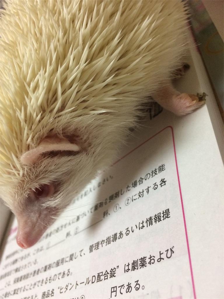 f:id:ichigo10banira:20170306191412j:image
