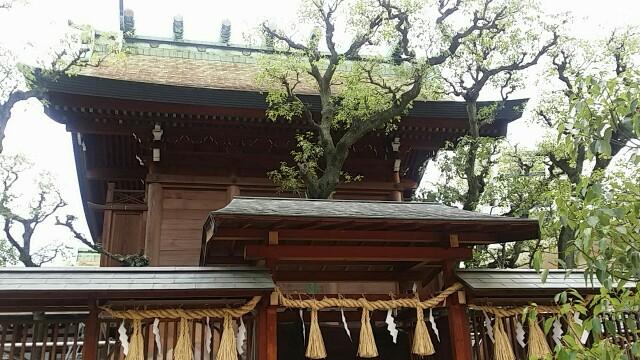 f:id:ichigo2015:20160615224459j:image