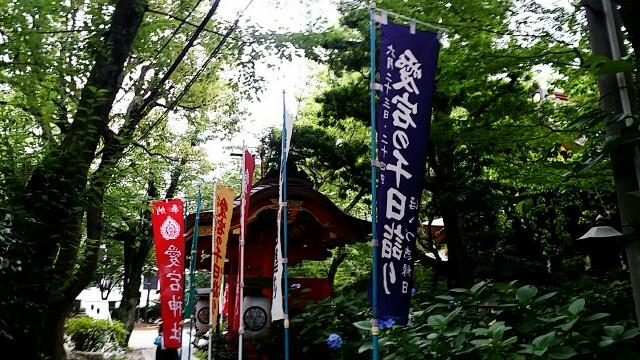 f:id:ichigo2015:20160619213215j:image