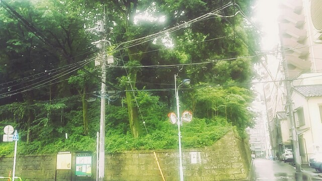 f:id:ichigo2015:20160624212209j:image