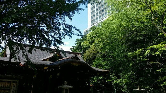 f:id:ichigo2015:20160626144708j:image