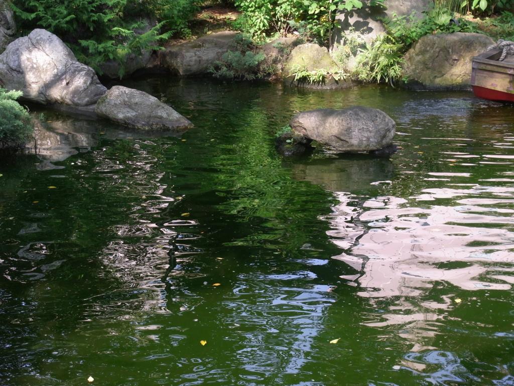f:id:ichigo2015:20160814203620j:plain