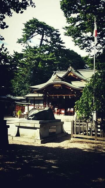 f:id:ichigo2015:20160821152643j:image