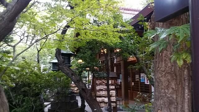 f:id:ichigo2015:20160904195019j:image