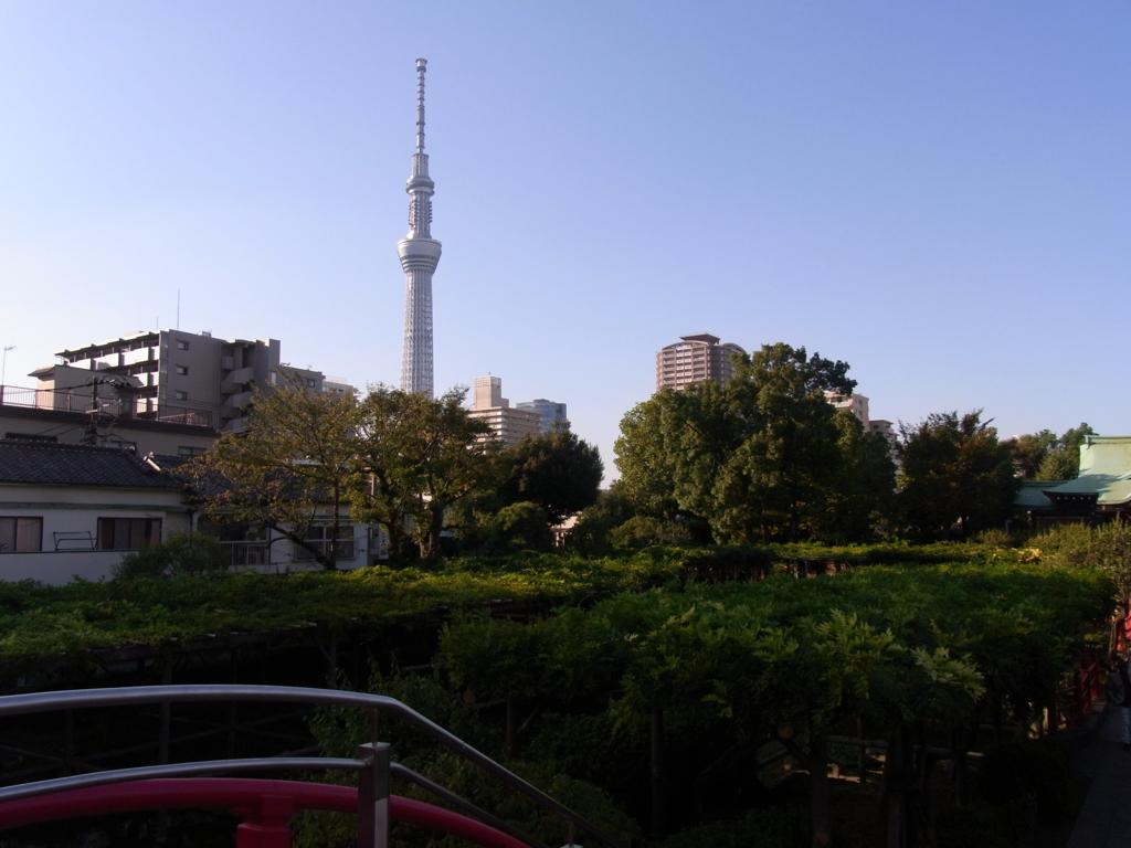 f:id:ichigo2015:20161015200745j:plain
