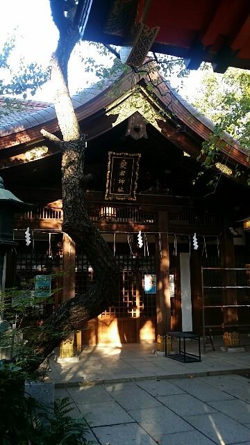 f:id:ichigo2015:20161027080421j:image