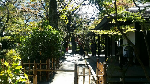 f:id:ichigo2015:20161109214017j:image