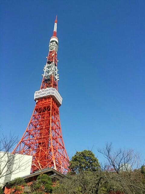 f:id:ichigo2015:20161207224409j:image