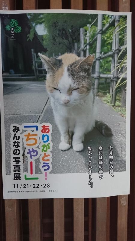 f:id:ichigo2015:20201121162112j:plain